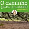 O caminho para o sucesso - Prosperidade I