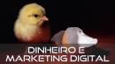Dinheiro e Marketing Digital