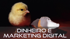 Dinheiro e Marketing Digital