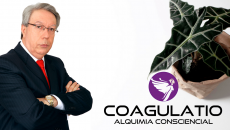 Coagulatio