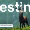 Destino -  Subtítulos en español
