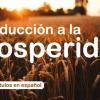 Introducción a la Prosperidad - Prosperidad I